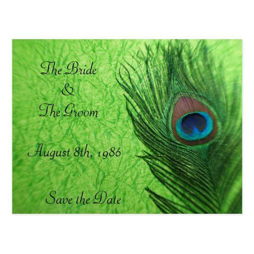 Peacock Feather in Lime Gre Save the Date Postcard