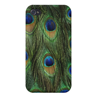 Peacock Feather iPhone 4/4s Case Cover