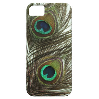Peacock Feather iPhone 5 Case
