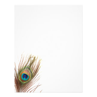 Peacock Feather Letterhead