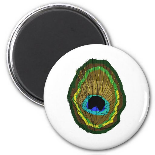 Peacock Feather Magnets