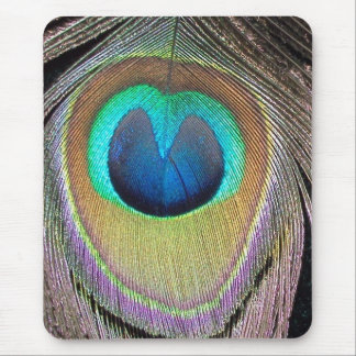 peacock feather mouse pad