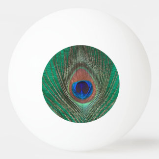 Peacock Feather on Green Ping Pong Ball