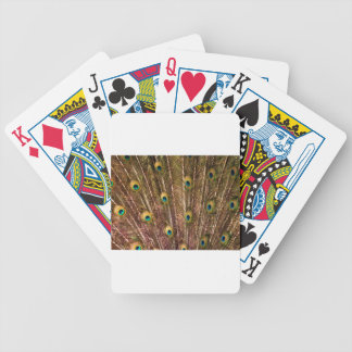 Peacock Feather Pattern Bicycle Playing Cards