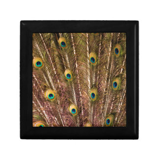 Peacock Feather Pattern Gift Box
