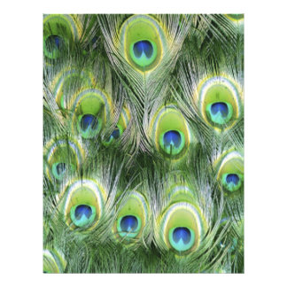 Peacock Feather Pattern Letterhead
