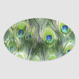 Peacock Feather Pattern Oval Sticker