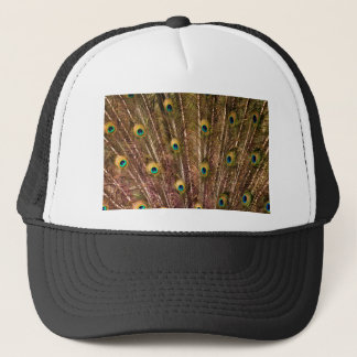 Peacock Feather Pattern Trucker Hat