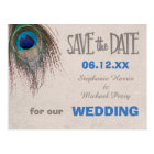 Peacock Feather Save the Date Wedding Postcard