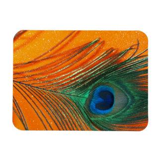 Peacock feather with Orange Glitter Still Life Rectangular Photo Magnet