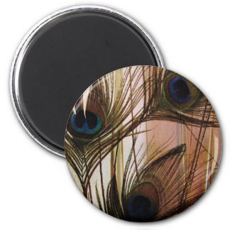 Peacock Feathers 2 Inch Round Magnet