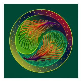 Peacock Feathers 3 Yin Yang Poster