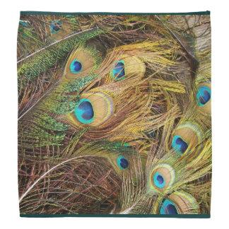 Peacock Feathers Bandana