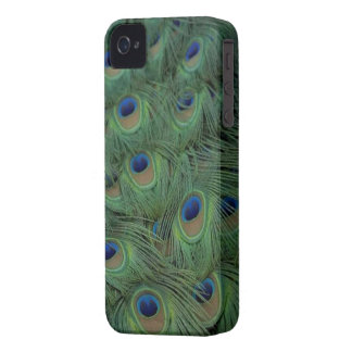 Peacock Feathers Case-Mate iPhone 4 Case