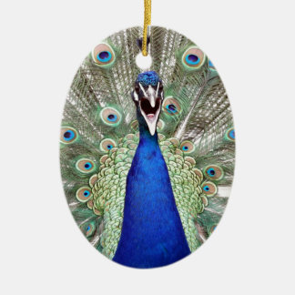 Peacock Feathers Ceramic Oval Ornament