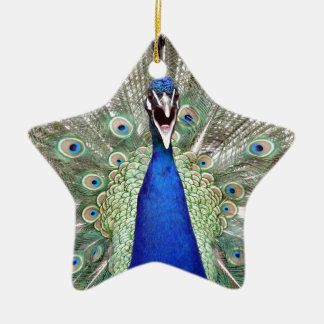 Peacock Feathers Ceramic Star Ornament