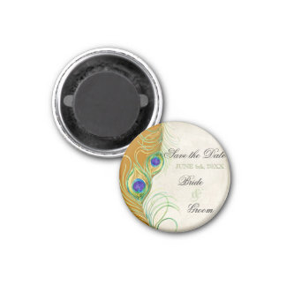 Peacock Feathers Damask Save the Date 1 Inch Round Magnet