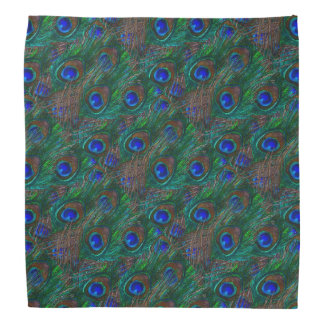 Peacock Feathers Etching Style Head Kerchiefs