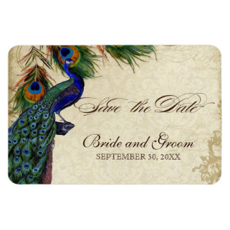 Peacock & Feathers Formal Save the Date Black Tan Magnet