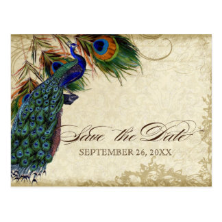 Peacock & Feathers Formal Save the Date Black Tan Postcard