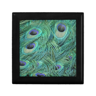 Peacock Feathers Gift Box