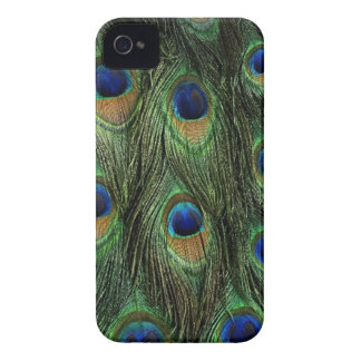 Peacock Feathers iPhone-4/4S Case Case-Mate iPhone 4 Cases