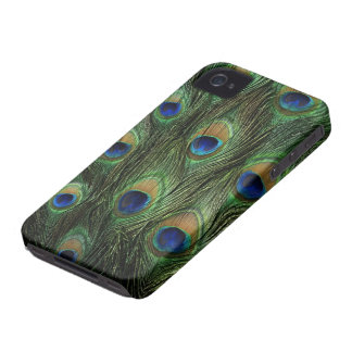 peacock feathers iPhone 4 cases