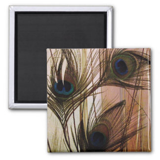 Peacock Feathers Fridge Magnets