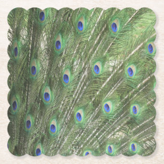 Peacock Feathers Paper Coaster