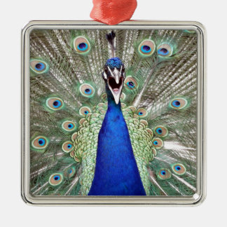 Peacock Feathers Silver-Colored Square Ornament