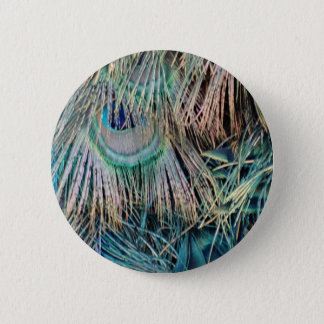Peacock Feathers Tan Green And blue 2 Inch Round Button