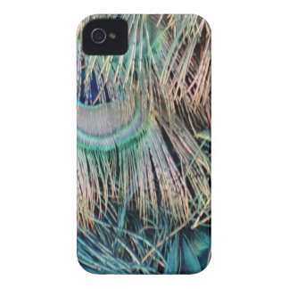 Peacock Feathers Tan Green And blue Case-Mate iPhone 4 Case