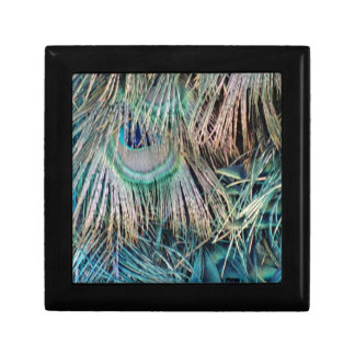 Peacock Feathers Tan Green And blue Gift Box