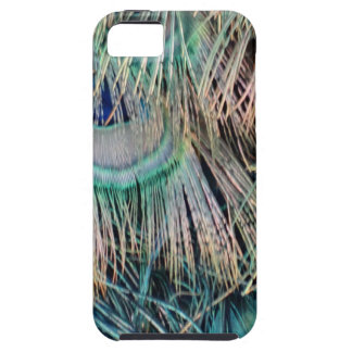Peacock Feathers Tan Green And blue iPhone 5 Covers