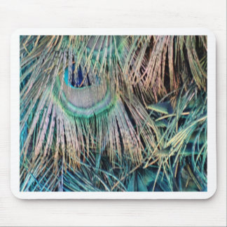 Peacock Feathers Tan Green And blue Mouse Pad