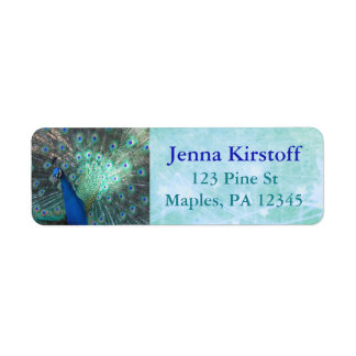 Peacock Feathers Turquoise Return Address Labels