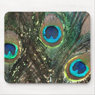 Peacock Feathers with Rocks Mouse Pad