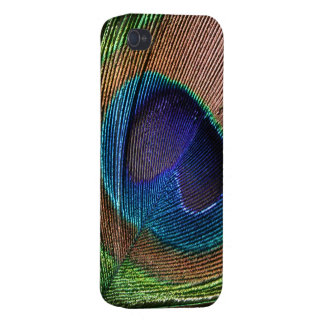 Peacock further beautiful blue photo iphone 4 case