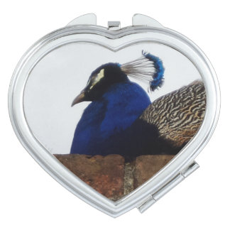 Peacock Heart Compact Mirror