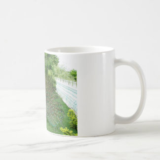 Peacock in a garden White Mug