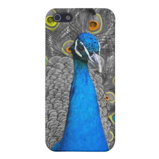PEACOCK IPHONE 4 CASE