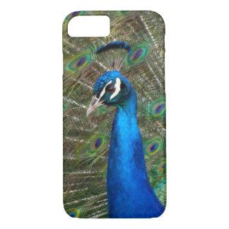 Peacock iPhone 8/7 Case