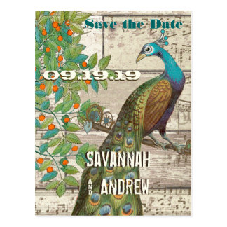 Peacock Love Bird Sitting in a Tree Save the Date Postcard