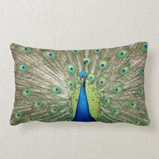 Peacock Lumbar Pillow