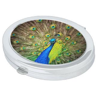Peacock Mirror For Makeup