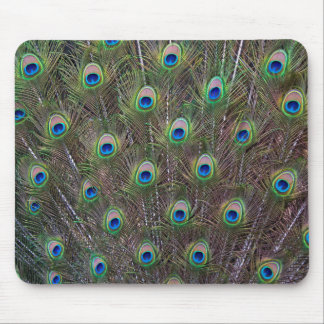 Peacock Mousemat Mouse Pad