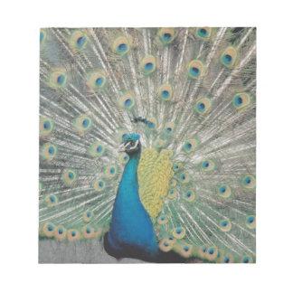 Peacock Notepad