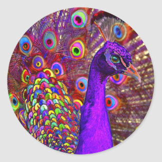Peacock of a million colors classic round sticker