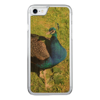 Peacock on green grass carved iPhone 7 case
