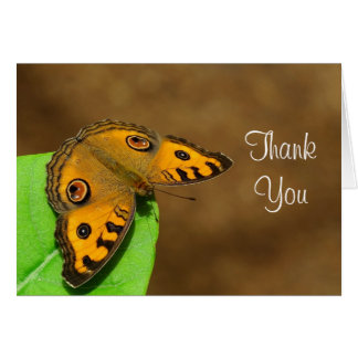 Peacock Pansy Thank you Card